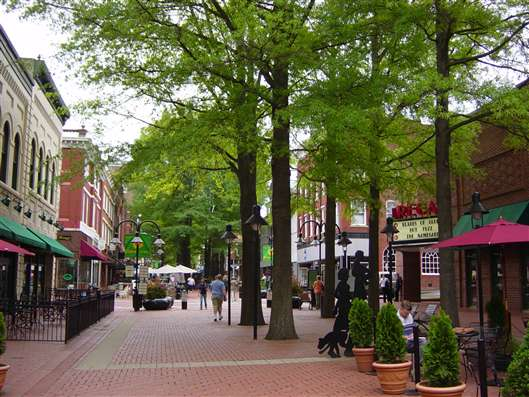 Local Guide to: Charlottesville, Virginia